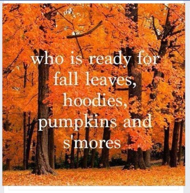 10 Quotes To Get You Ready For The Fall Season Autumn Quotes Fall Images Fall Fun