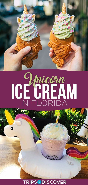 This Florida Ice Cream Shop Makes The Most Adorable Desserts Desserts Around The World Florida Disneyland Desserts