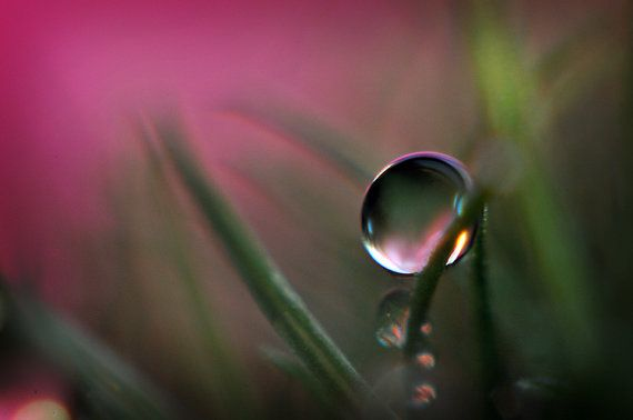 how to take water drop photos