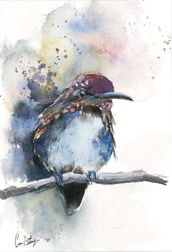 Blue Hummingbird Original Watercolor Painting Bird Painting Bird