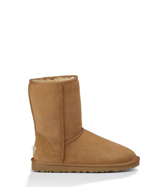 Classic Short, UGG Australia.  http://www.uggaustralia.co.uk/classic-short/5825.html?dwvar_5825_color=CHE#start=1&cgid=women-boots