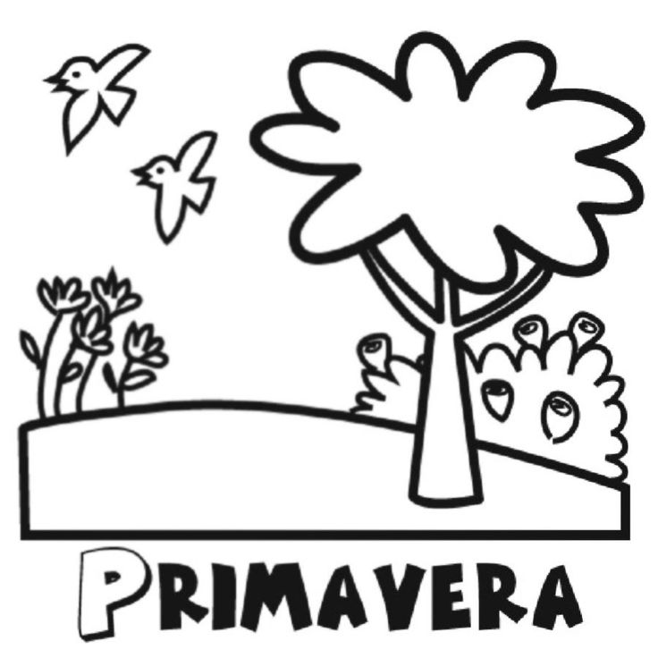 363 best PRIMAVERA images on Pinterest