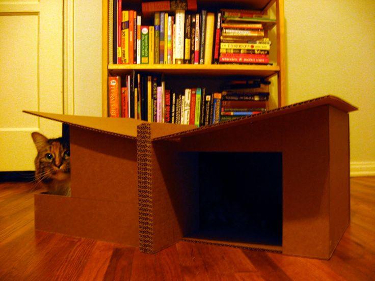 88 best Cat Cardboardings images on Pinterest   Cat stuff, Cat ...