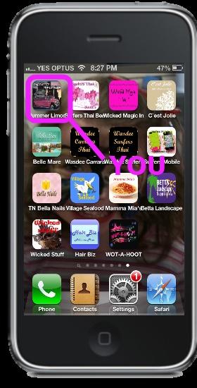 Business Mobile App Branding