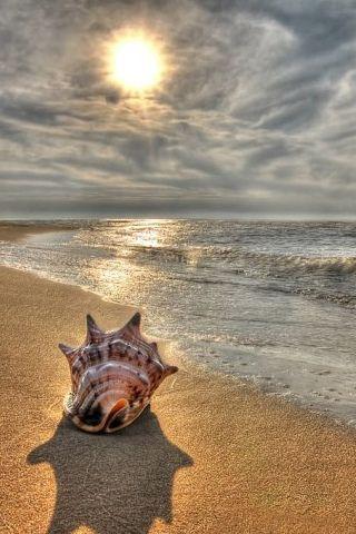 en la playa hasta el anochecer