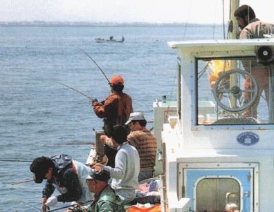 東京近郊で手ぶらで釣り体験!<釣り船(乗合船)に乗って旬の魚を釣りに行こう♪>「貸し竿・おにぎり・飲み物・氷・お土産」付き!