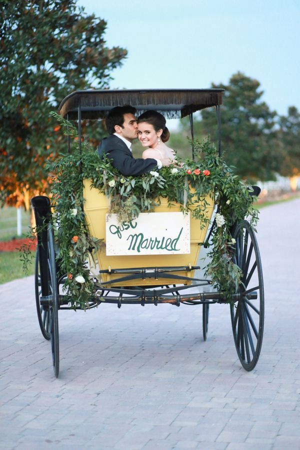 Horse carriage festooned with greenery | Photo by Life Long Studios