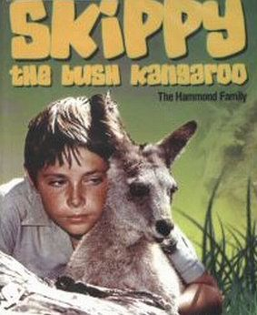 Skippy the Bush Kangaroo - I don't think I could name a kid in my neighborhood or school who didn't want their own kangaroo!