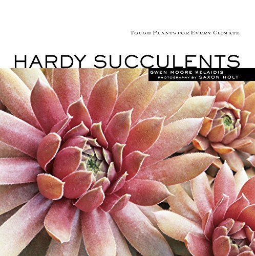 Hardy Succulents; tough and reliable in cold winter climates