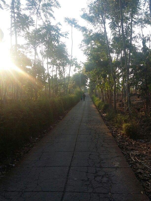 Jalan kampung