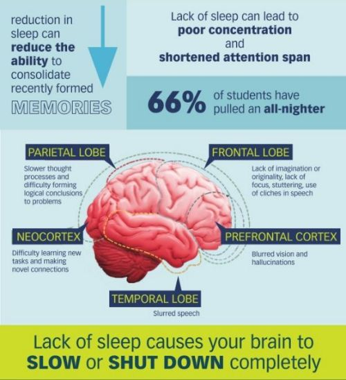 how lack of sleep affects school When the word college comes to mind, it is often associated with studying, coffee  and lack of sleep many students sacrifice sleep to study for a.