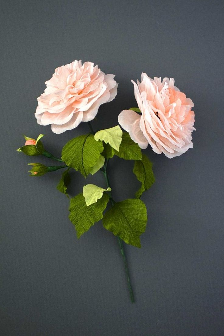 DIY Crepe Paper English Rose Tutorial from Crafted To Bloom #crepepaperrevival…