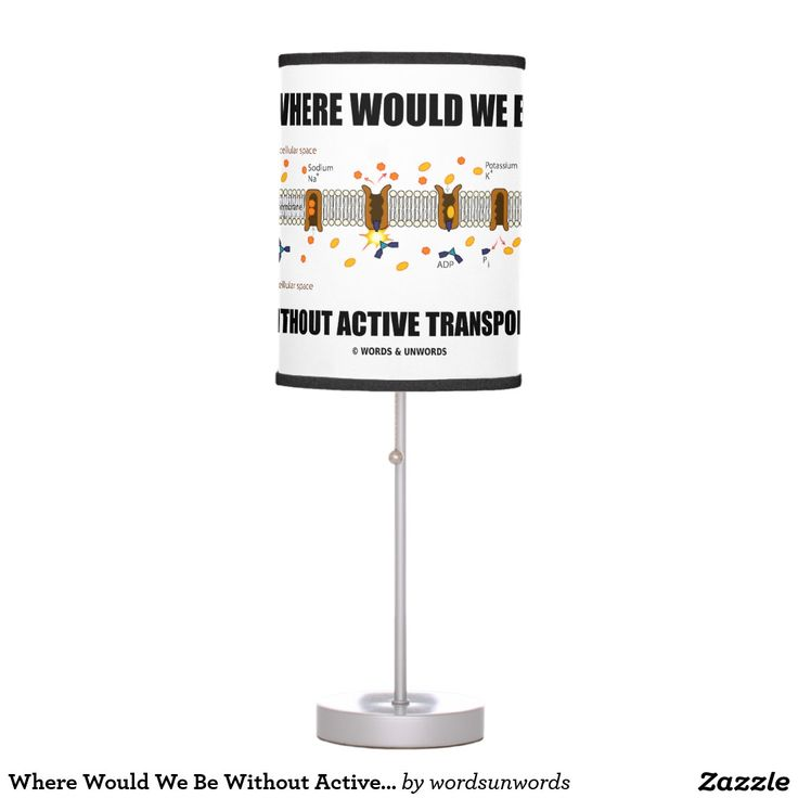 """Where Would We Be Without Active Transport? #where #wouldwebe #without #activetransport #sodiumpotassiumpump #geek #humor #existential #biology #biologist #cellmembrane #wordsandunwords Here's a lamp featuring the sodium-potassium pump used in active transport along with the following ponderous rhetorical question: """"Where Would We Be Without Active Transport?"""""""