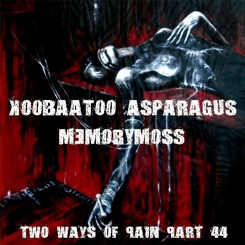 http://www.discogs.com/Koobaatoo-Asparagus-Memorymoss-Two-Ways-Of-Pain-Part-44/release/5125308
