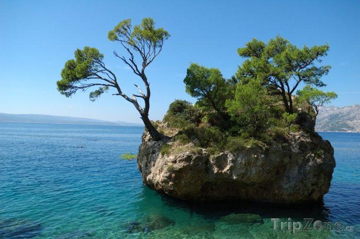 Fotka, Foto Skaliska u pobřeží letoviska Brela (Makarská riviéra, Chorvatsko)