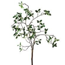 Feuille « Mini Grove »