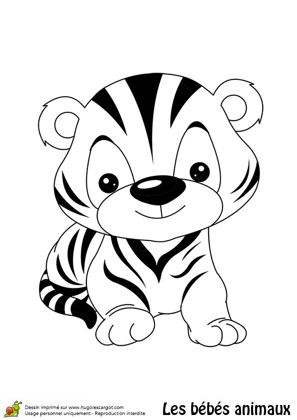 En coloriant ce dessin, ce petit tigre retrouvera la couleur de sa belle fourrure orange