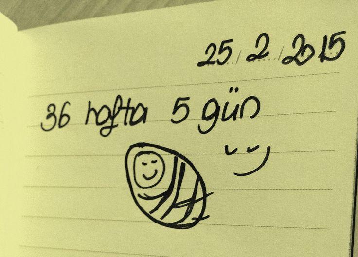 Bebeğim gelinceye kadar beklediğim 36 hafta 5 günün oldukça kısa özeti ve endişelerim... isitmekaybideyince.blogspot.com.tr 'de