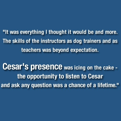 """Cesar is a best-selling author, public speaker, and internationally acclaimed star of the TV shows """"Dog Whisperer with Cesar Millan,"""" """"Leader of the Pack"""" and the new hit """"Cesar ,"""" making him the pet care industry's most recognized and sought-after authority working ."""