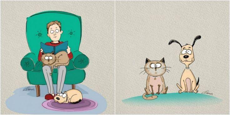 Jak je rozdl mezi kokami a psy  ProNladucz