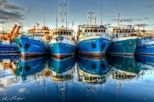 Fremantle Boat Harbour- get me to the ocean immediately.