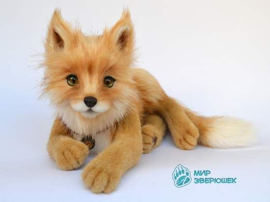 Sandy Fox cub By Anastasia Arzhaeva - Bear Pile