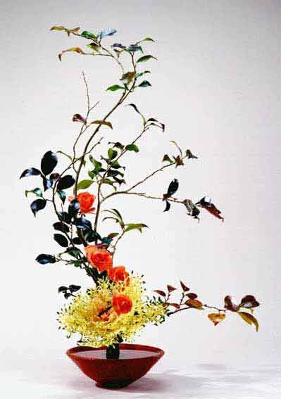 葉牡丹 habotan & rose ikebana