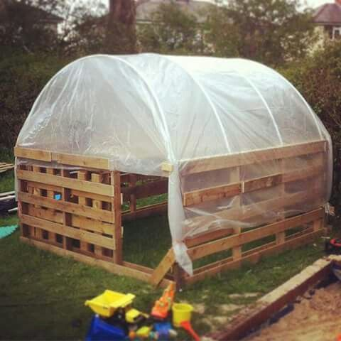 Pallet greenhouse i would make 2pallets high as walk in for What is a greenhouse made out of