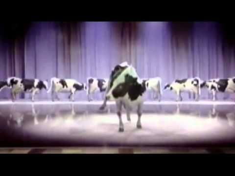 Happy birthday singing,  dancing cow. --YouTube