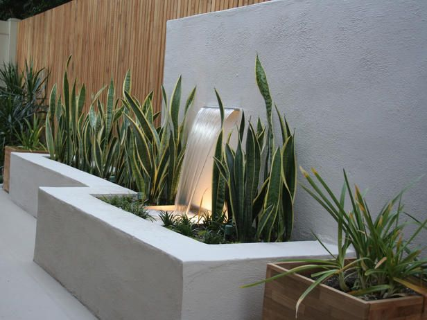 simple, clean, concrete, wood, variegated green, water, lighting zen...