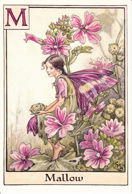 This is the actual classic flower fairy alphabet by Cicely Mary Barker.  The Flower Fairy Book by Cicely Mary Barker