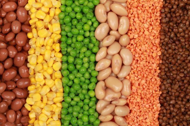 Lista de alimentos ricos en proteínas - Vivir Salud