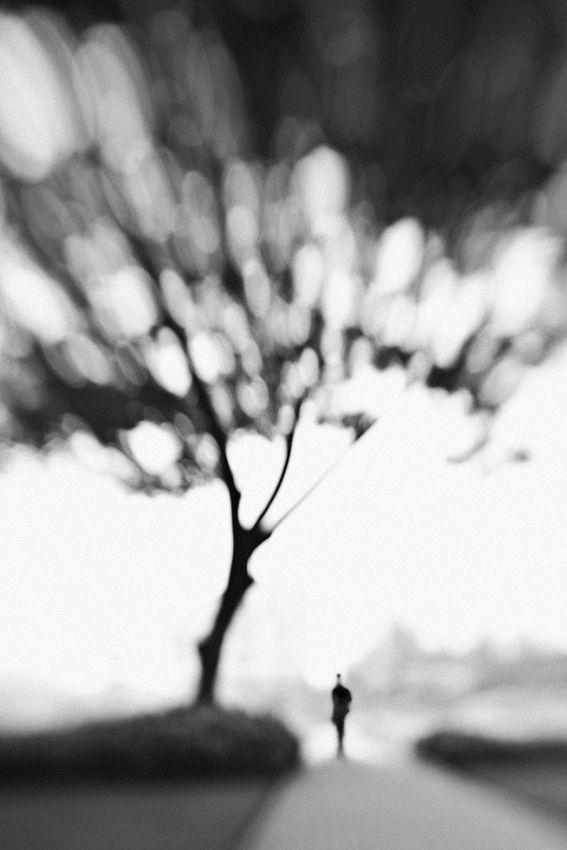 Fall nature: Reminiscence - Solitude man and black tree | photography black  white . Schwarz-Weiß-Fotografie . photographie noir et blanc | Photo: Hengki Lee |
