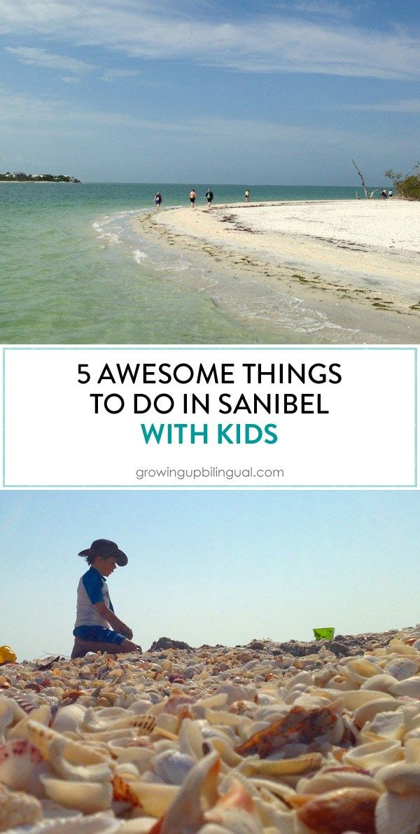 Best Things To Do In Sanibel With Kids Florida Travel Destinations Sanibel Florida Vacation