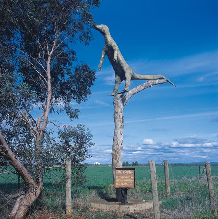 The Big Tree Goanna, Crystal Brook, South Australia