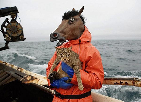 cavallo da salvataggio