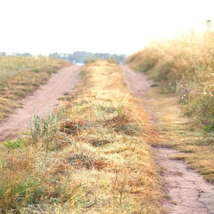 Some mornings are simply made for dirt roads #startthedaywithsomethingbeautiful