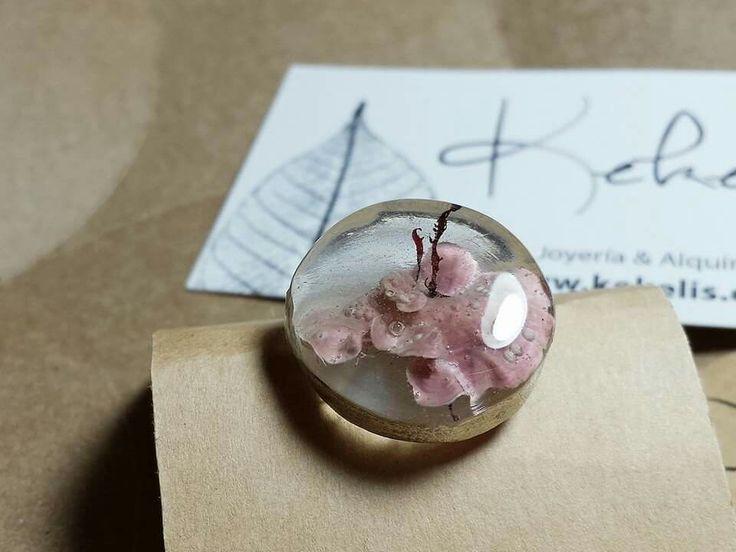 Natural Coral   #handmade #jewelry #ring #joyeria #hechoamano #plata #anillo #coral #alga #natural #CostaVasca #nohaydos