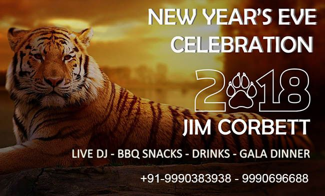 Jim Corbett New Year Eve celebration, deals, offers Starts @ Rs 3499/-