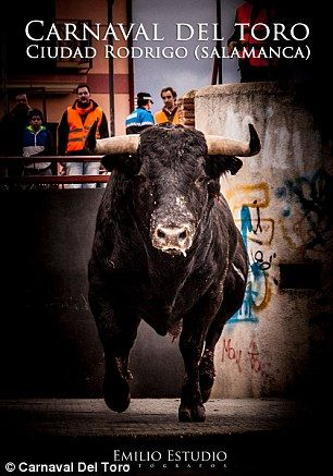 A picture advertising the annual bullfighting festival  SO CRUEL!!
