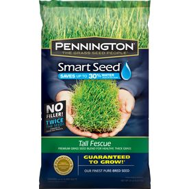 Awesome grass seed... 3 weeks and I have a green lawn already :) wanna get some more and didn't want to forget the type.