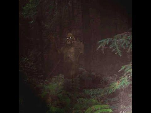 Terrifying Sasquatch Growls Captured in Alberta, Canada What is making the growls/screams in the forest of Alberta? Whatever it is it sounds angry and within close proximity to the brave cameraman who...