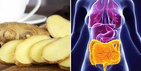 Ecco cosa succede al tuo corpo se mangi zenzero tutti i giorni | Rimedio Naturale
