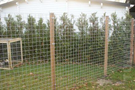 Gaas gegalvaniseerd zonder houten kader H173xB173cm voor € 0,00 - Tuinafscheiding Winkel, schuttingen, tuischermen & hekken