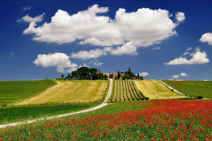 If you LIKE Tuscany, see more photos on www.facebook.com/amazingtuscany and press LIKE