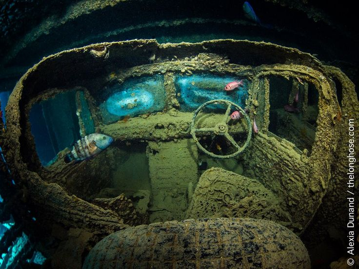 © Alexia Dunand | Truck on the S.S. Thistlegorm wreck. Red Sea.