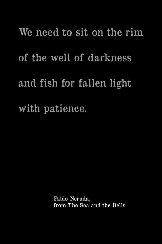 We need to sit on the rim of the well of darkness and fish for fallen light with patience. - Pablo Neruda