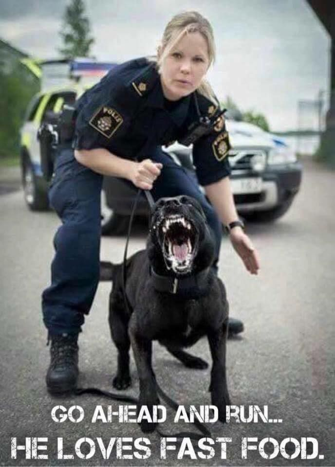 Ad from the swedish police   http://ift.tt/1S9prXP via /r/funny http://ift.tt/1RBQfFR  funny pictures