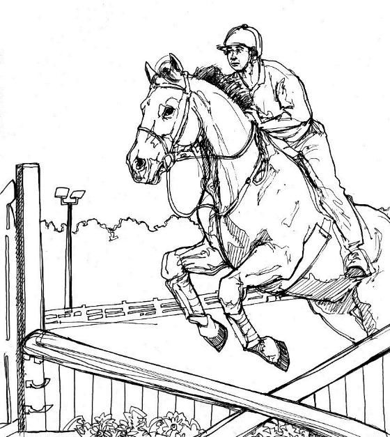 Horses Jumping Coloring Pages