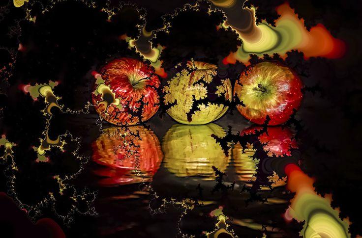 artwork by Carla Bresciano